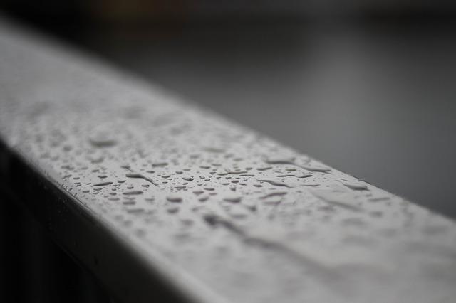 Comment reconnaitre un sol humide ?