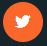 icon sociaux twitter
